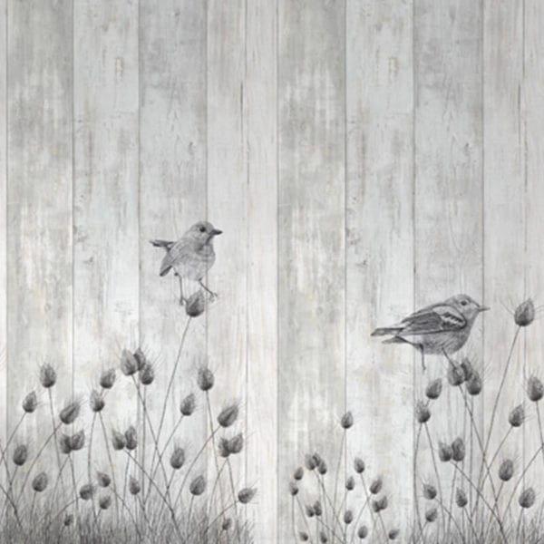 Siberia Plovers - Bird Illustration Wall Panels